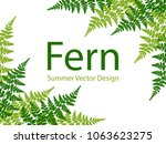 fern frond tropical leaves... | Shutterstock .eps vector #1063623275
