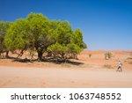 tourist walking at sossusvlei ... | Shutterstock . vector #1063748552