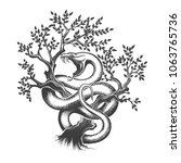 Snake with open mouth crawling up inside a tree drawn in engraving style. Vector illustration.
