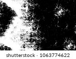 the texture is black and white... | Shutterstock . vector #1063774622