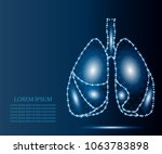 human lungs in polygonal low... | Shutterstock .eps vector #1063783898