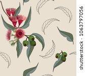 australia gum nut and flower... | Shutterstock .eps vector #1063797056