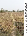 Small photo of dried farm land during summer season due to water scarcity