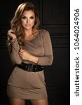 sensual beautiful brunette... | Shutterstock . vector #1064024906