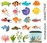 aquarium flora and fauna color... | Shutterstock .eps vector #1064077535