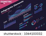 isometric infographic web...
