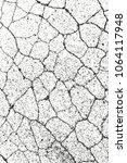 distressed overlay texture of... | Shutterstock .eps vector #1064117948