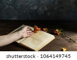 still life book on the table... | Shutterstock . vector #1064149745
