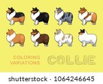 dog collie coloring variations... | Shutterstock .eps vector #1064246645
