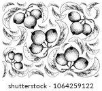 exotic fruit  illustration... | Shutterstock .eps vector #1064259122