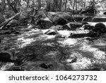 australian creek amongst the... | Shutterstock . vector #1064273732
