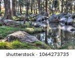 australian creek amongst the... | Shutterstock . vector #1064273735