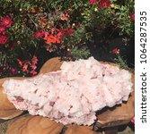 pink halite mineral specimen...   Shutterstock . vector #1064287535