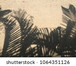 shadow of palm leaves on... | Shutterstock . vector #1064351126