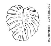 tropical leaf line art  outline ... | Shutterstock .eps vector #1064381072