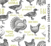 vector farm animals background. ... | Shutterstock .eps vector #1064433926
