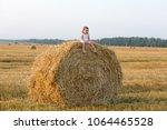little girl walking in the... | Shutterstock . vector #1064465528