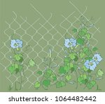 Ipomoea On The Grid.blue...