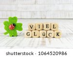 four leaf clover with ladybird  ... | Shutterstock . vector #1064520986