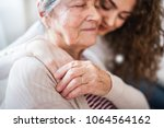 a teenage girl with grandmother ... | Shutterstock . vector #1064564162