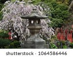 Stock photo a view of the japanese shinto shrine in spring 1064586446