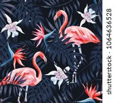 tropical birds pink flamingo... | Shutterstock .eps vector #1064636528