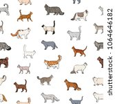 Seamless Pattern With Purebred...