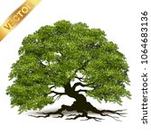 beautiful tree realistic  on a... | Shutterstock .eps vector #1064683136