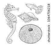 sea collection. original hand... | Shutterstock .eps vector #1064706218
