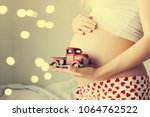 beautiful pregnant woman at home | Shutterstock . vector #1064762522