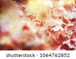 spring flowers. sakura | Shutterstock . vector #1064762852