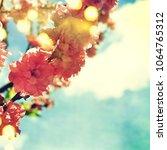 spring flowers. sakura | Shutterstock . vector #1064765312