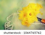beautiful fresh narcissus | Shutterstock . vector #1064765762