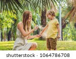 mom and son use mosquito spray... | Shutterstock . vector #1064786708