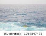 hawaii kai  oahu   februar 25 ... | Shutterstock . vector #1064847476