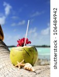 coconut with drinking straw on... | Shutterstock . vector #106484942