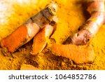 fresh root and turmeric powder  ... | Shutterstock . vector #1064852786