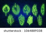 vector tropical exotic leaves ... | Shutterstock .eps vector #1064889338