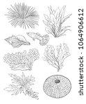 Fish  Seaweed  Sea Urchin ...