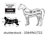 scheme of cutting horse meat... | Shutterstock .eps vector #1064961722
