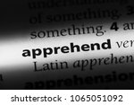 Small photo of apprehend word in a dictionary. apprehend concept.