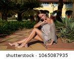 beautiful  elegant girl  model... | Shutterstock . vector #1065087935