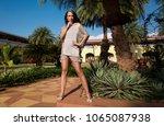 beautiful  elegant girl  model... | Shutterstock . vector #1065087938
