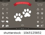 paws icon symbol | Shutterstock .eps vector #1065125852