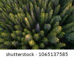 high angle aerial view of green ...   Shutterstock . vector #1065137585