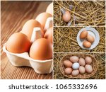 set of photos with chicken... | Shutterstock . vector #1065332696