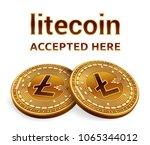litecoin. accepted sign emblem. ... | Shutterstock .eps vector #1065344012