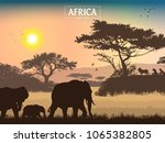 african landscape. grass  trees ... | Shutterstock .eps vector #1065382805