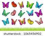 watercolor flying butterflies... | Shutterstock .eps vector #1065456902
