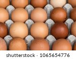 chicken eggs pallet from the... | Shutterstock . vector #1065654776